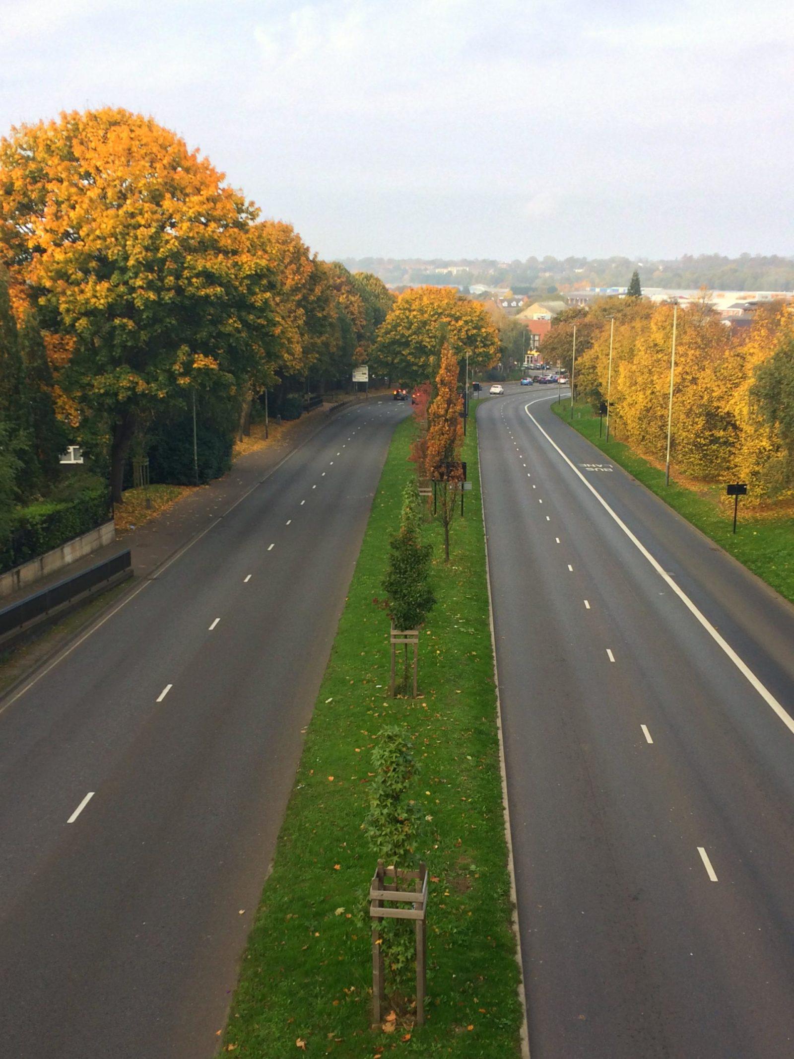 Autumn city scape Norwich england Fall colours