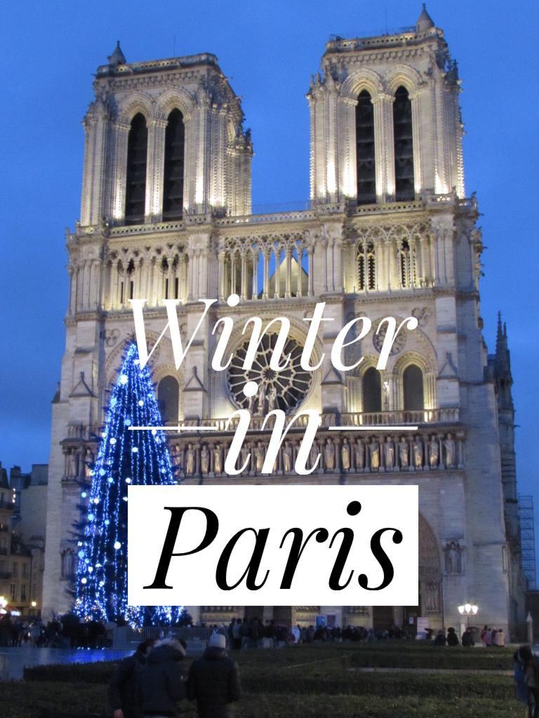 notre dame paris france winter christmas holidays season