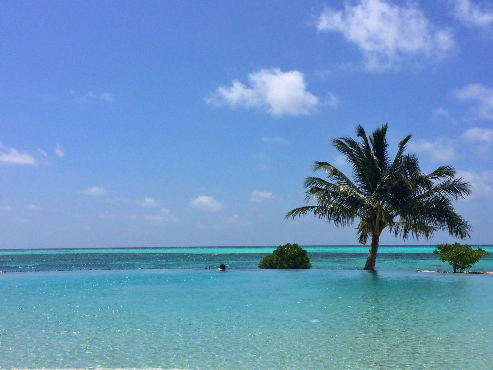 infinity pool luxury travel lux resort the maldives